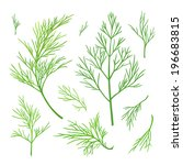 vector twigs of dill | Shutterstock .eps vector #196683815