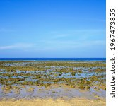 Small photo of Ebb tide. Strong low tide in the tropical sea. Low tide on Koh Lanta.
