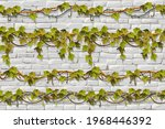 wall and borders branches liana ...   Shutterstock .eps vector #1968446392