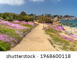 A Scenic Pathway With Blooming...