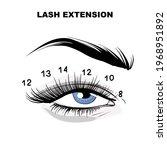 eyelash extension microblading... | Shutterstock .eps vector #1968951892