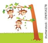 Monkeys Swinging In A Tree....