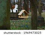 Wooden bird feeder on tree in...