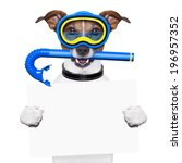 Scuba Dog With Snorkel And...