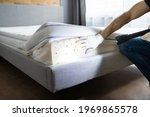 Bed Bug Infestation And Treatment Service. Bugs Extermination