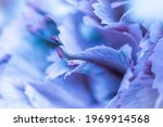 Abstract Floral Background ...