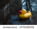 Yellow Rubber Duck In A Dirty...