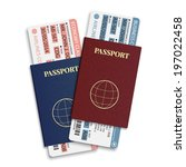 vector airline passenger... | Shutterstock .eps vector #197022458
