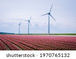 Offshore Windmill Farm In The...