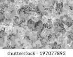 gray rose fabric background ... | Shutterstock . vector #197077892
