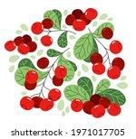 fresh delicious ripe wild... | Shutterstock .eps vector #1971017705