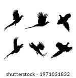 A Set Of Flying Pheasants....
