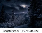 Small photo of Dark night view in Tatra Mountains. Moonlit path and coniferous forest, the moon can be seen through dispersing clouds. Selective focus on the plants, blurred background.
