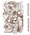 of canned fruit | Shutterstock .eps vector #197151518