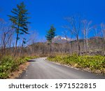 Path To The Mountain With...