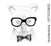 hand drawn portrait of koala... | Shutterstock .eps vector #1972525832