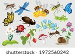 seth summer flowers insects.... | Shutterstock .eps vector #1972560242