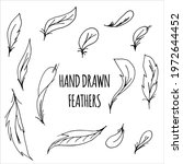 vector hand drawn feathers... | Shutterstock .eps vector #1972644452