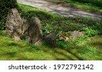 Old Granite Gravestones On The...