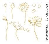 buddhism  lotus doodles element ...   Shutterstock .eps vector #1972806725
