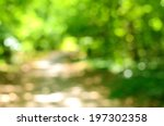 blurred forest background ... | Shutterstock . vector #197302358