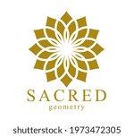 flower of life ancient symbol... | Shutterstock .eps vector #1973472305