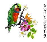 exotic birds and beautiful... | Shutterstock .eps vector #197360312