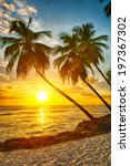 Stock photo beautiful sunset over the sea with a view at palms on the white beach on a caribbean island of 197367302