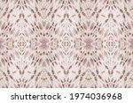 pink ethnic dyed art. grey... | Shutterstock . vector #1974036968