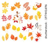 collection of autumn leaves and ... | Shutterstock .eps vector #197441696