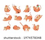 cute funny cat in different... | Shutterstock .eps vector #1974578348