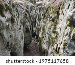 Huge Moss Covered Boulders Lie...