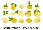 lemon fruits isolated on white. ...   Shutterstock .eps vector #1975465388