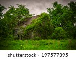 A Very Old  Wooden  Moss And...