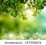 spring or summer season...   Shutterstock . vector #197590676