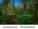 A Landscape View Covered By...