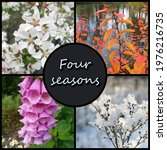 A Collage Of Four Photos  With...