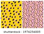 simple hand drawn geometric... | Shutterstock .eps vector #1976256005