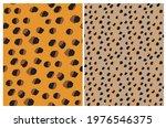 simple hand drawn geometric... | Shutterstock .eps vector #1976546375