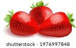 red ripe juicy sweet strawberry   Shutterstock .eps vector #1976997848