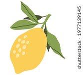 decorative yellow  lemon fruit... | Shutterstock .eps vector #1977139145