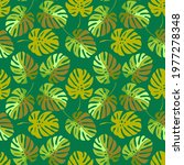 vector   colored monstera... | Shutterstock .eps vector #1977278348