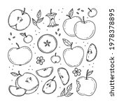 set of colorless various apples ... | Shutterstock .eps vector #1978378895