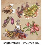 cocoa cacao and chocolate.... | Shutterstock .eps vector #1978925402