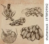 cocoa cacao and chocolate.... | Shutterstock .eps vector #1978929542