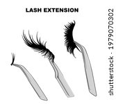 eyelash types  false eyelashes...   Shutterstock .eps vector #1979070302