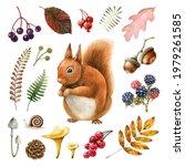 Wildlife Autumn Forest...