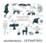 hand drawn vector isolated...   Shutterstock .eps vector #1979697905