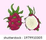 unusual pink dragon fruit set | Shutterstock .eps vector #1979910305