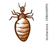 Louse Hand Drawn Icon. Lice ...